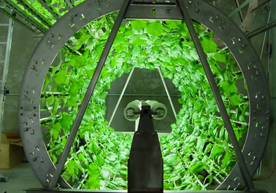 7 Types of Hydroponics Systems